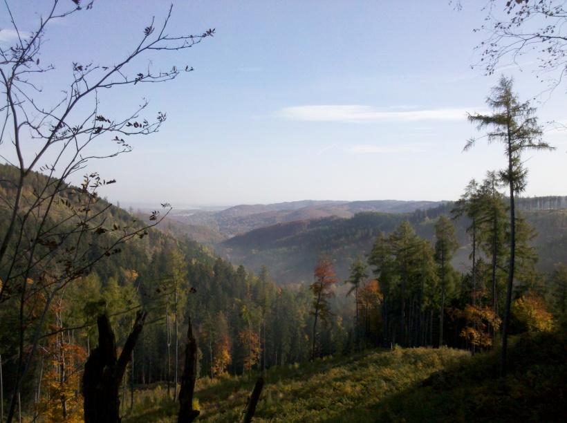 2012-10-20_10-59-51_11