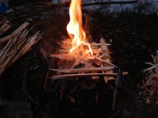 Feuerholz 7 (Medium)